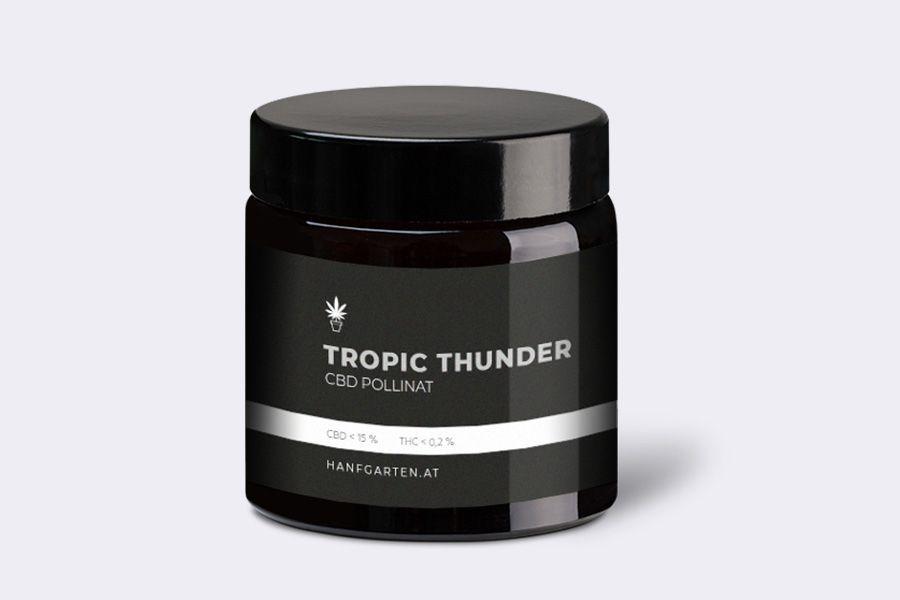 Tropic Thunder Blueten