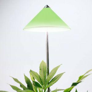 LED Steckleuchte I-Sun