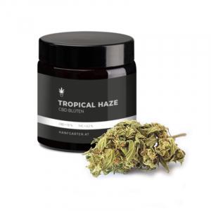 Tropical Haze